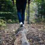 Lære og liv – hvordan finde den sunde balance?