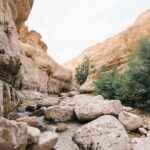 Når der ikke lades sten på sten tilbage af det bibelske Israel